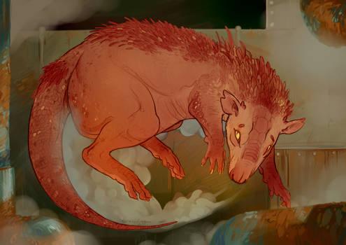 R: Drago Rat