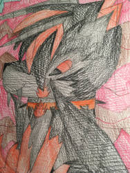 SilverWings ( Black Fire the protector wolf knig