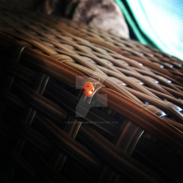 LadyBug by Beziehunqsweise