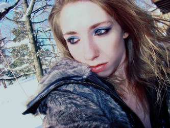 Winter Wonderland by charmingreality