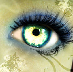 Winter Eye with GIMP by ColorinSilence