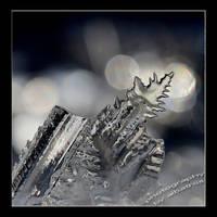 Ice  by albatros1