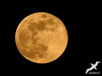 Full Moon by albatros1