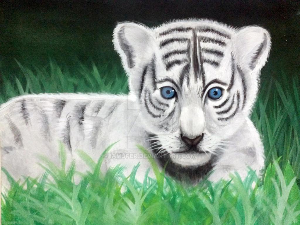blue eyed baby white tiger by iamjfer on deviantart