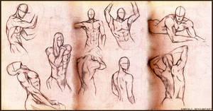 Male anatomy practice