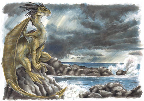 Dragon by the Sea