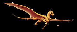 Pygmy Dragon