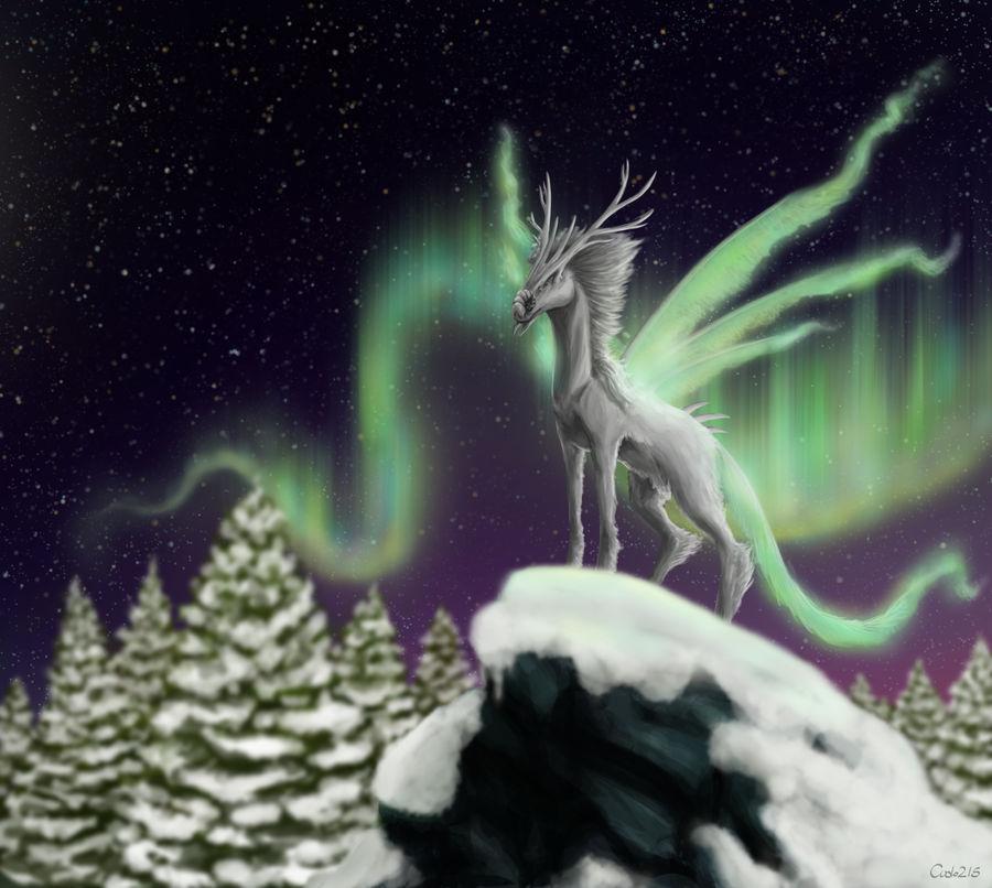 Ninnkigal (Arctic Dragon contest winner)