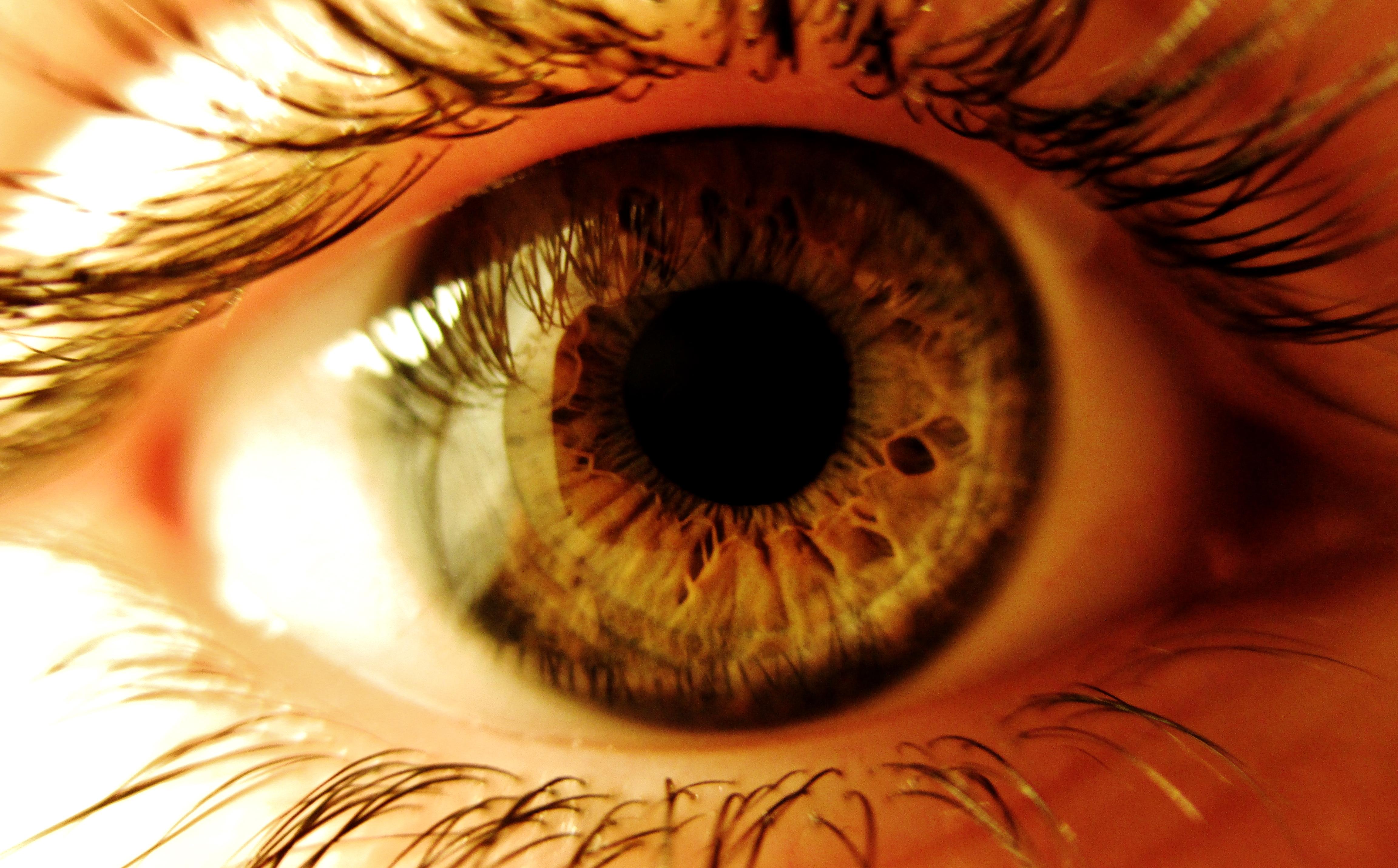 Closeup Of Eye 71