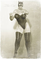 Vintage Female Wrestler 3 by mb08