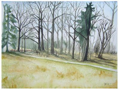 Trees in Valla by Gothdarling