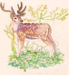 Flowers and deer [for Miri] by merrinou