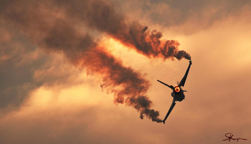 Swift like a Falcon by KabochiWorks