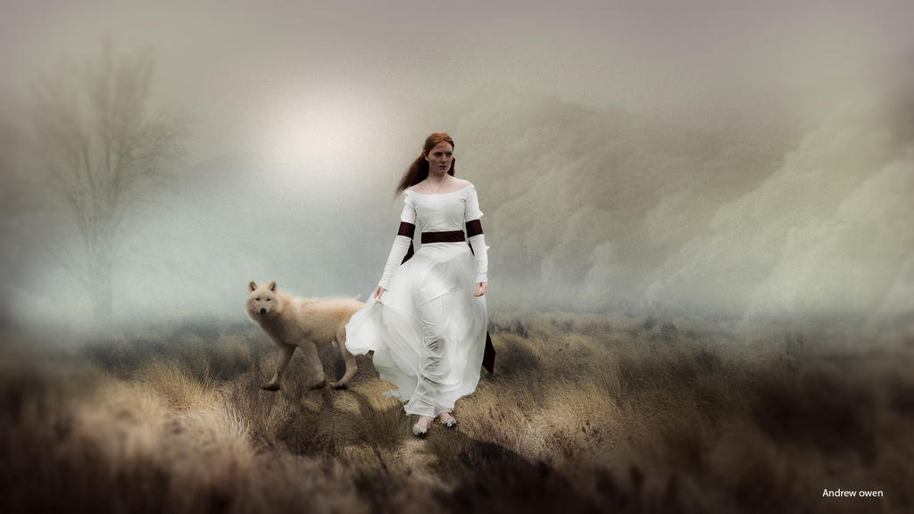 White Wolf by toosox