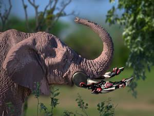 Bionic Elephant 2