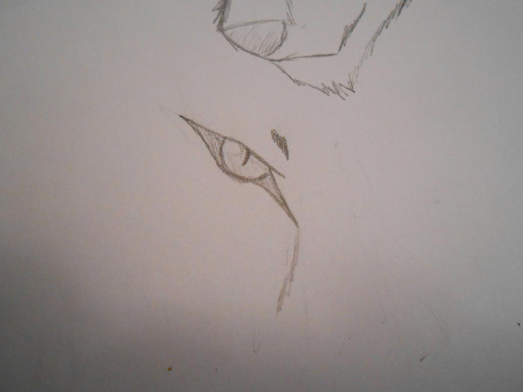 Sharp Eye by BaltoTheShadowHusky