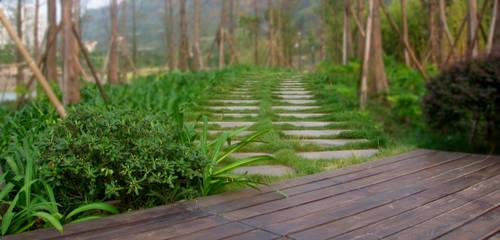 Path by LShitz