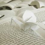 Fields of words