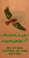 Col Tahir Shamim