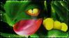 Pokemon Sceptile Stamp
