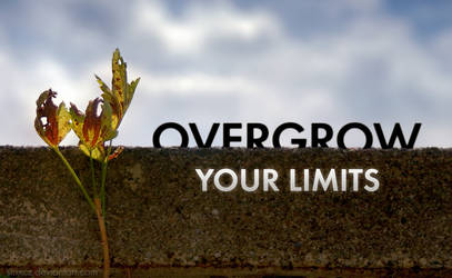 Overgrow Your Limits