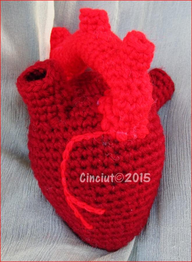 Anatomical heart by Cinciut