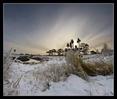 Severn Beach 4 by Alexandra35