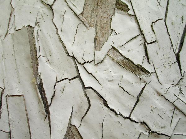 Peeling Paint 1 by draginchic-stock