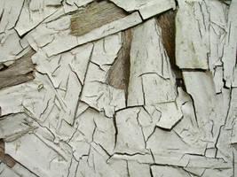 Peeling Paint 2 by draginchic-stock