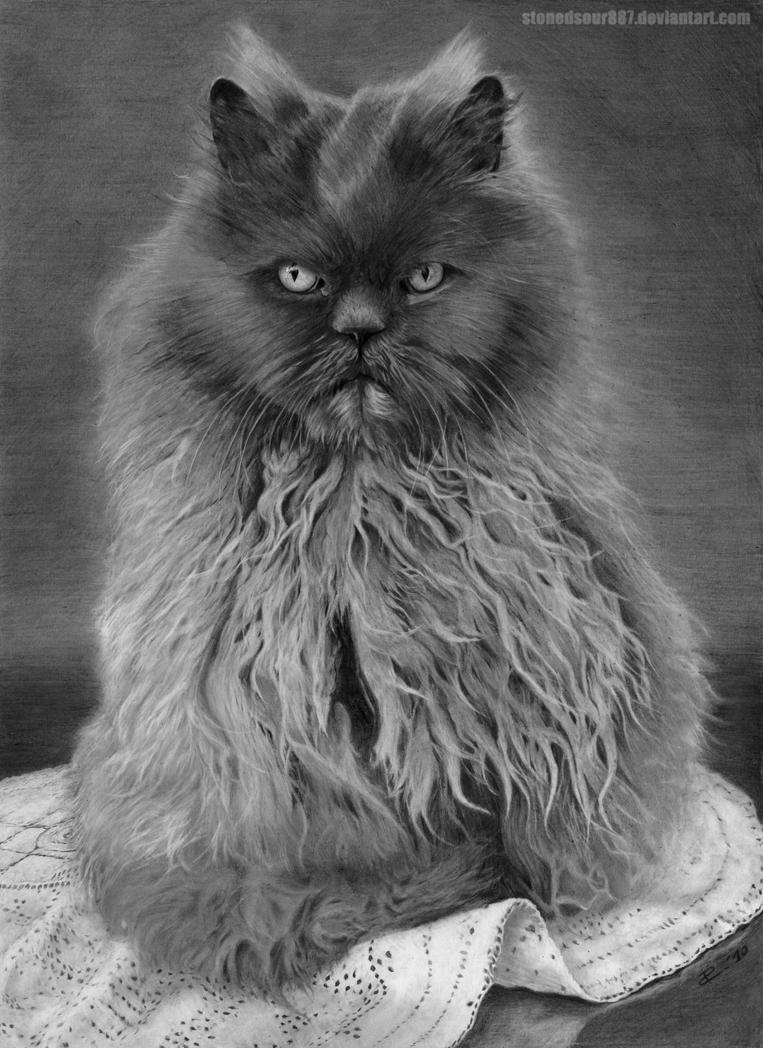 Persian cat by stonedsour887