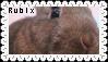 Rubix Stamp by Buniis