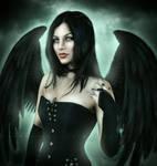 Dark Intentions