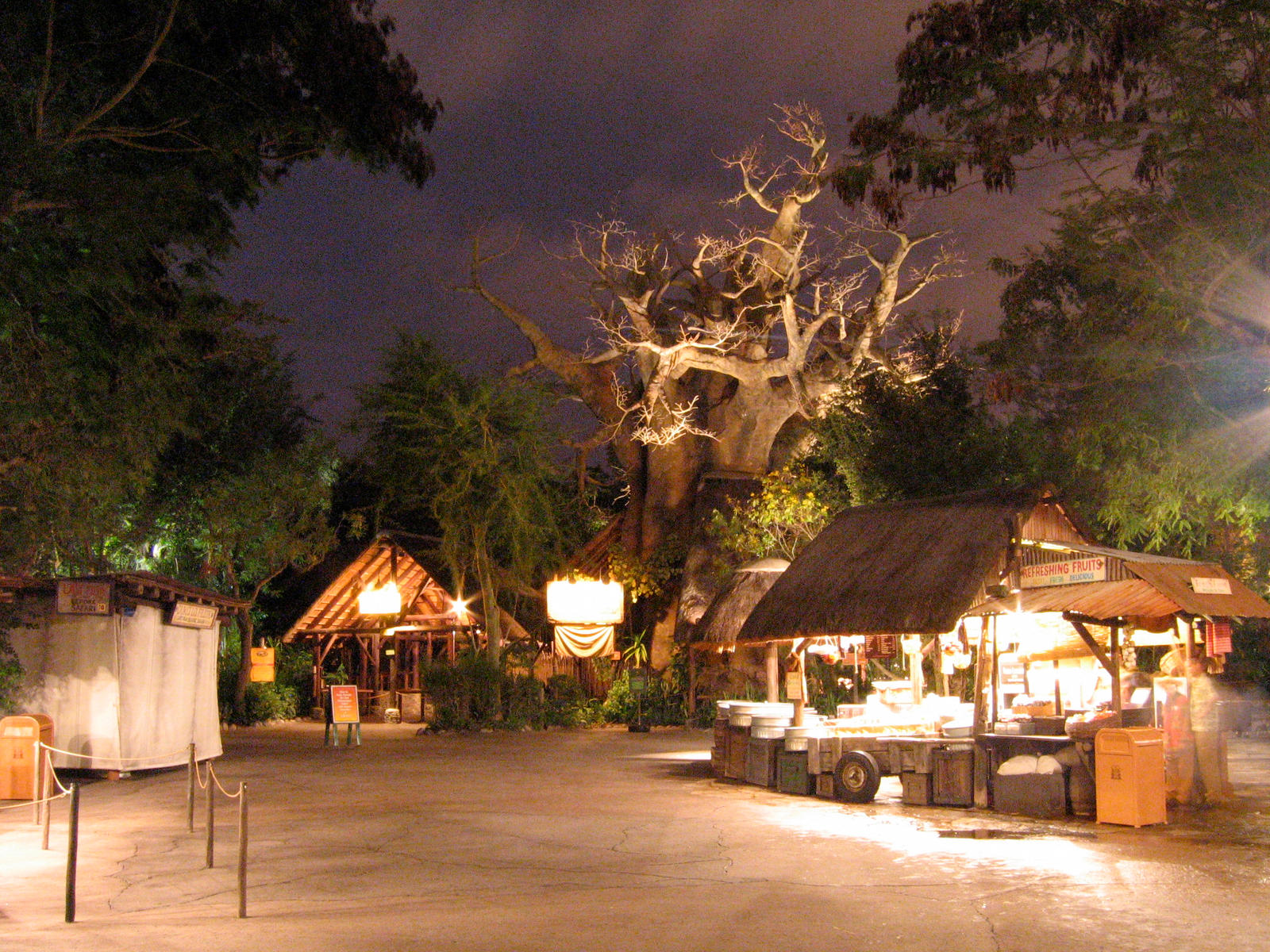 Animal Kingdom at Night 39 by AreteStock