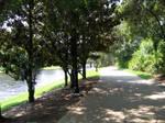 Riverside Landscapes 1