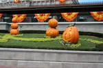 Magic Kingdom Halloween 21