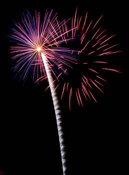 2012 Fireworks Stock 42