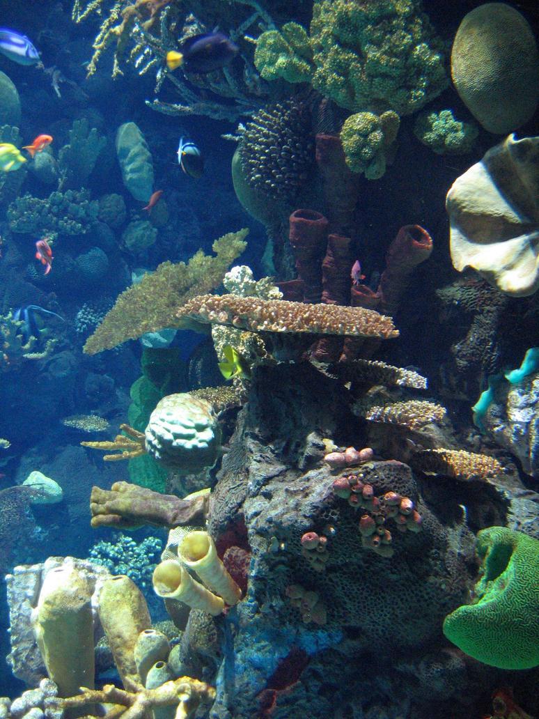 Columbus Zoo Aquarium 10 By Aretestock On Deviantart