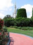 MK Rose Garden 9