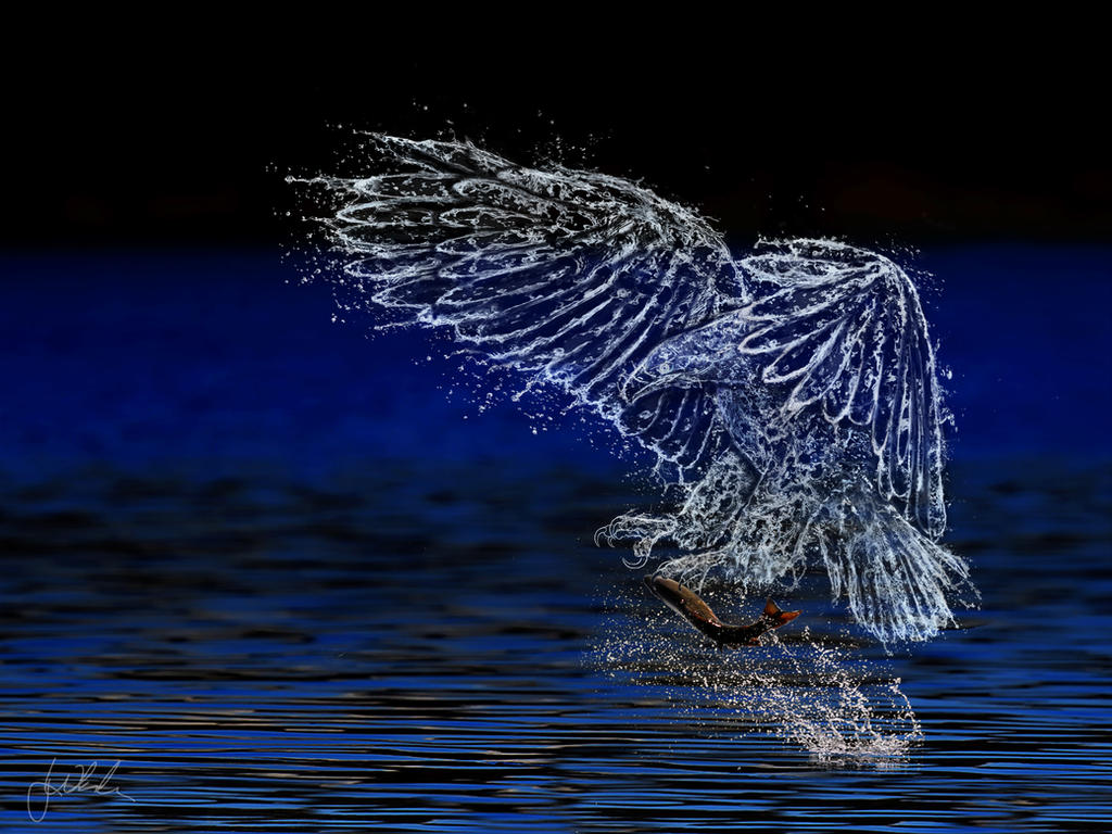 Water Eagles Picture