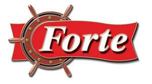 logotype forte by mashine