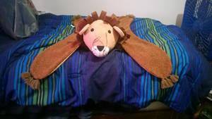I was at Hobby Lobby last Friday got lion rug