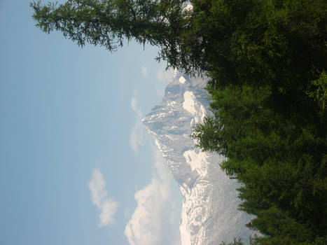 Moutains-trees