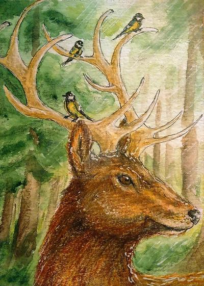 König Des Waldes