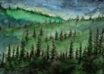 #215 Wilderness by Nhaundar