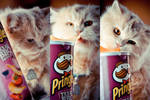 Lily heart pringles