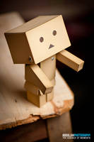 Danbo needs a hug by Cj-Caty