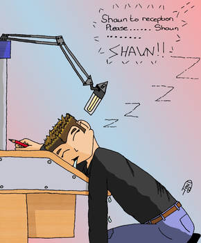Shaun sleein on the Job