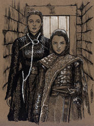 The Bobbsey Twins in the North by Jerantino