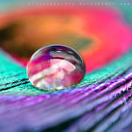 love's way by illusionality