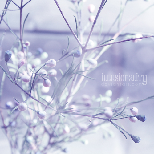 fading by illusionality